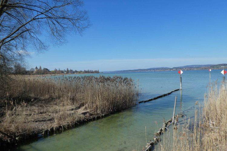 Insel Reichenau, Blick auf den See