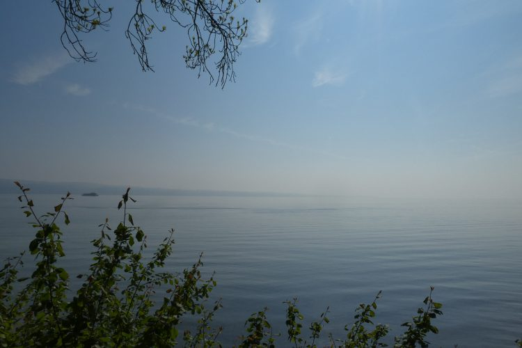 Aussichtspunkte in Konstanz: Hörlepark