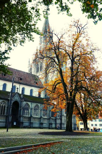 Kirchen am westlichen Bodensee: Kirchen am westlichen Bodensee: Münster in Konstanz