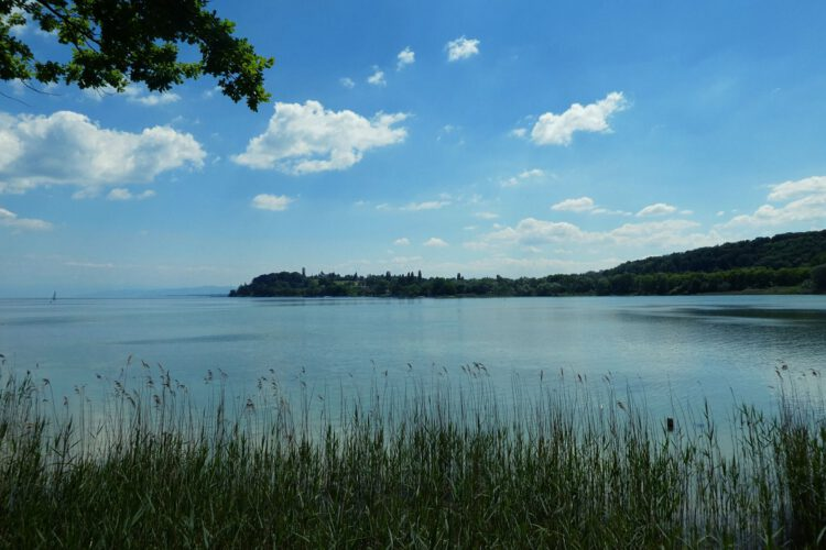 Aussicht von der Mainau auf den Bodensee
