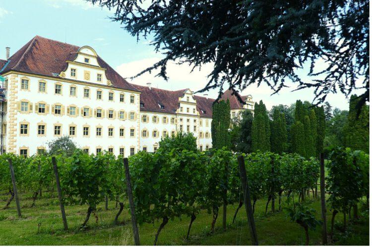 Südfassade von Schloss Salem mit Schauweinberg