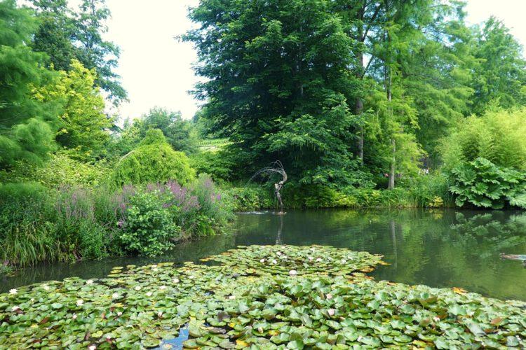 Gärten am Bodensee: Mainau