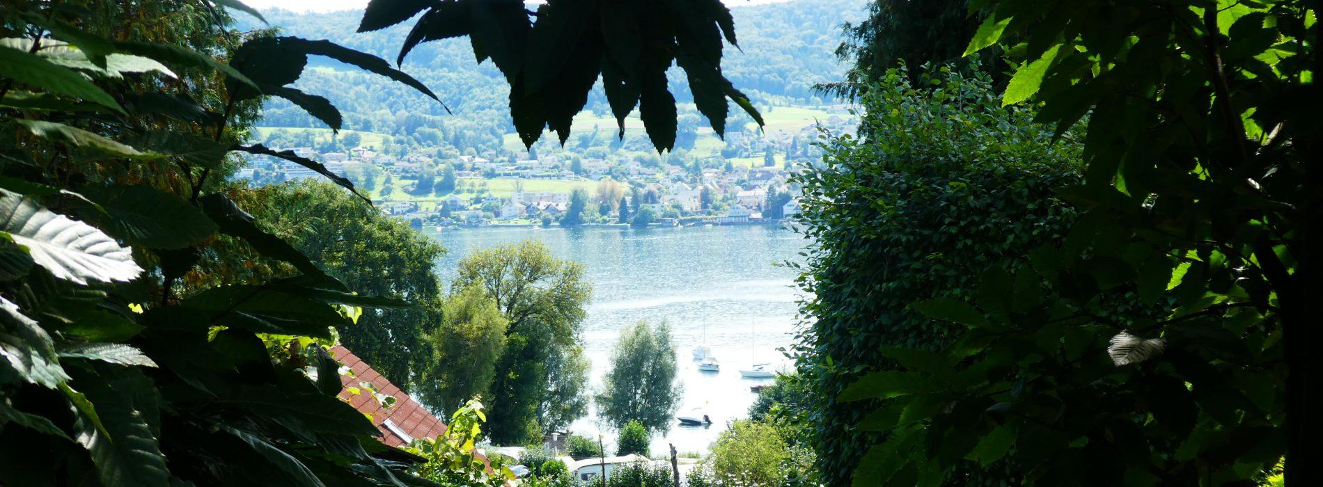 Blick vom Haus von Hermann und Mia Hesse auf den Bodensee